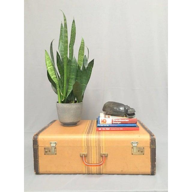 Large Vintage Herringbone Stripe Suitcase With Bakelite Handle For Sale - Image 9 of 11
