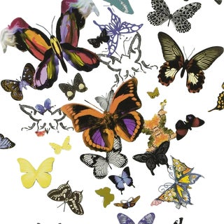 Christian Lacroix Butterfly Parade Multicolored Wallpaper Sample For Sale