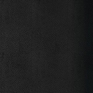 Sample - Schumacher Shagreen Wallpaper in Carbon For Sale