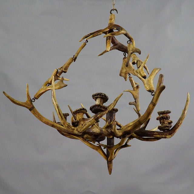 a great antique antler chandelier with original antlers from the deer, fallow deer and virginia deer. seven spouts made of...