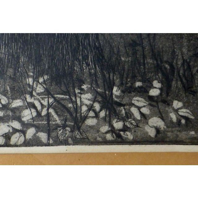 White Black/White Print by Ann Usborne Signed Autumn Night For Sale - Image 8 of 10