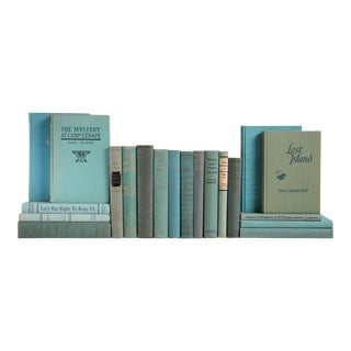 Seafoam Vintage Book Collection - Set of 20