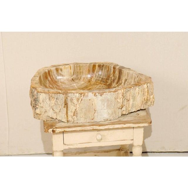 Vintage Mid Century Petrified Wood Sink For Sale In Atlanta - Image 6 of 9