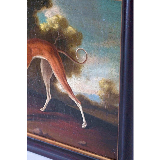 19th Century 19th Century English Oil on Canvas of Whippet in a Landscape For Sale - Image 5 of 13