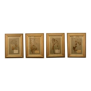 Small 19th Century Framed Pressed Botanicals - a Pair For Sale