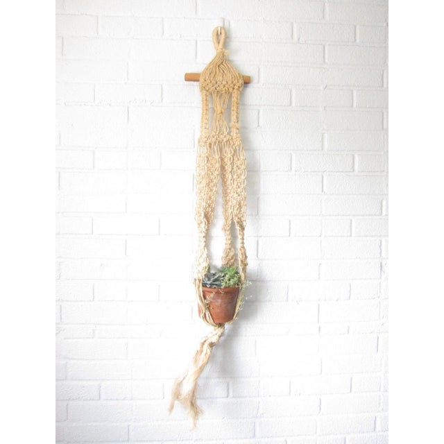 "This vintage macrame plant hanger features nests for one potted plant and hangs a full 48"" long. Featuring intricate and..."