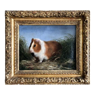 19th Century French Painting of Guinea Pig in a Rare Giltwood Frame For Sale