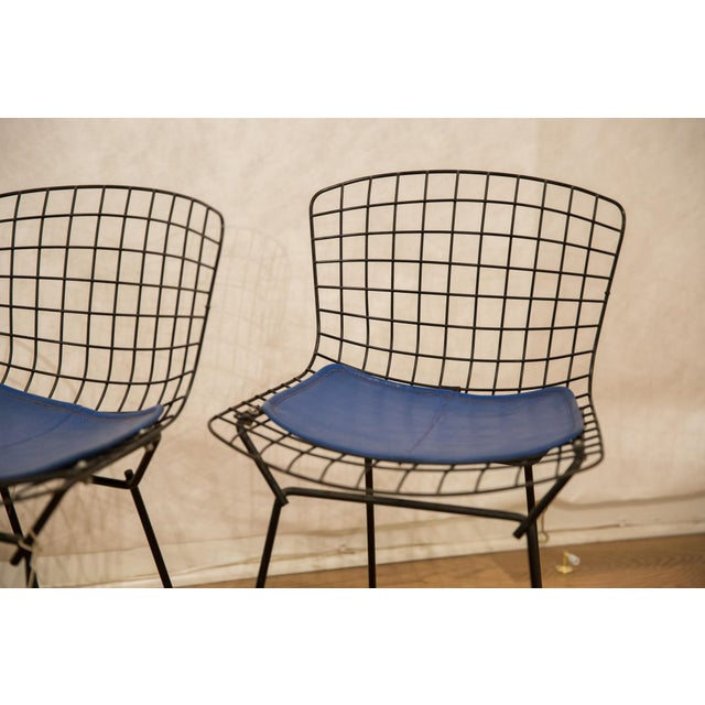 :: Vintage 1960s pair of Knoll / Harry Bertoia children's chair in hard to come by black coloring with unusual blue seat...