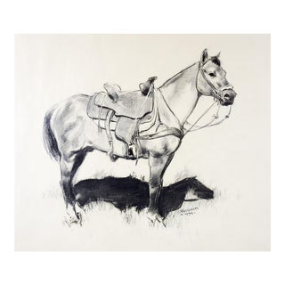 Charcoal Drawing of Working Ranch Horse For Sale