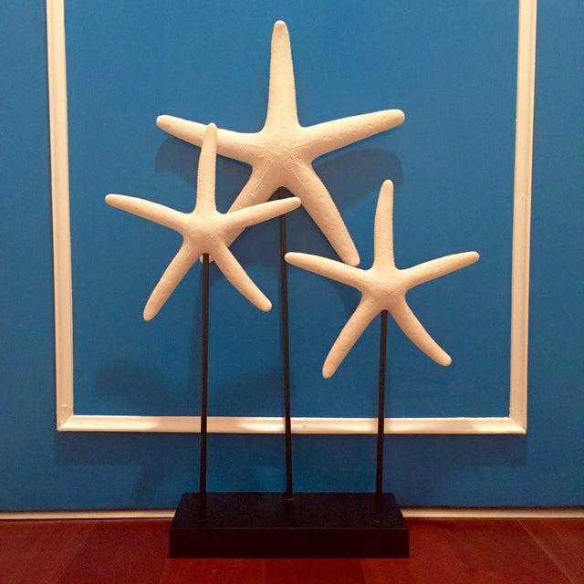 Decorative Starfish on Sandstone Base - Image 2 of 4