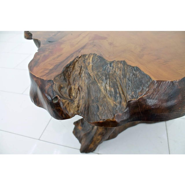 Solid Root Wood Coffee Table, 1960s For Sale - Image 9 of 10