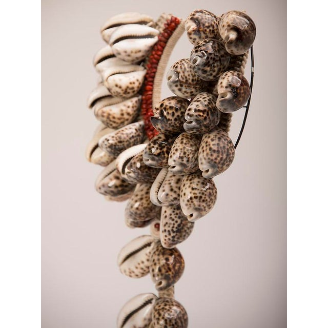 Vintage Grand Scale Cowrie Shell Necklace circa 1980, Africa, Mounted on Custom Stand For Sale In Houston - Image 6 of 9