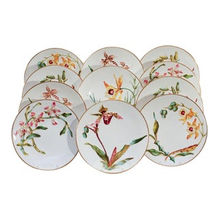 19th C. Bodley Orchid Plates-Raised Hand Painted Flowers - Set of 12 For Sale