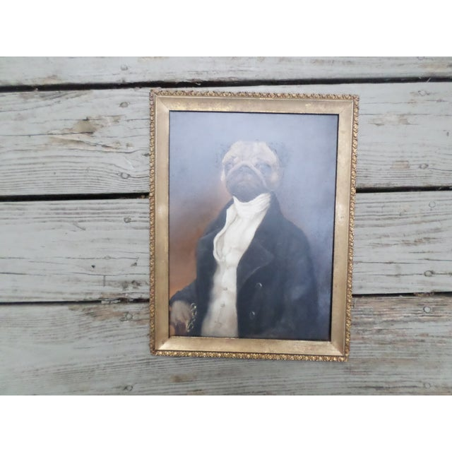A whimsical oil on board portrait of a pug dressed in 18th century formal wear, holding a pair of glasses in his right...