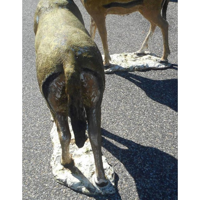 Bronze Deer Statues - A Pair For Sale In New York - Image 6 of 7