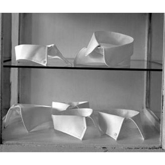 "1998 ""Collars on Glass Shelf"" Photograph For Sale - Image 4 of 6"