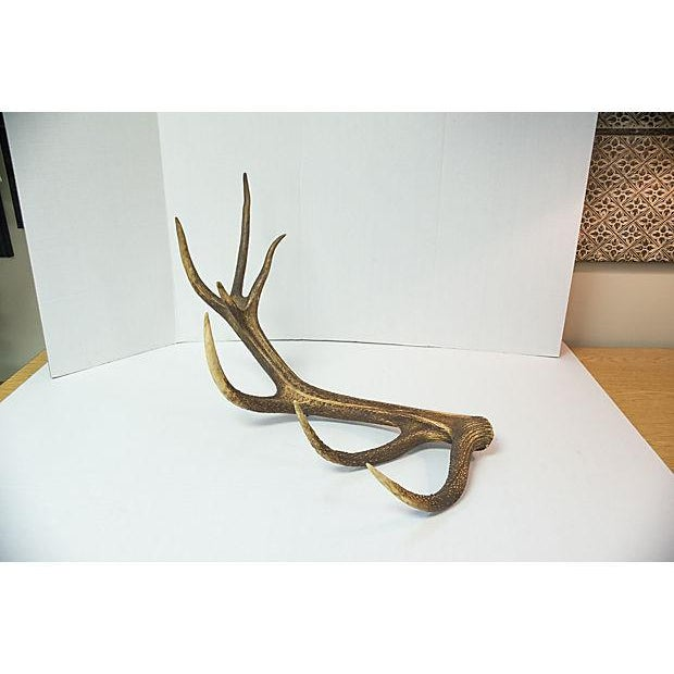 Vintage Natural Antler - Image 2 of 4