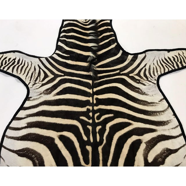 Forsyth's master upholsterers expertly trimmed this zebra hide rug in luxurious black velvet. The hue adds the perfect...