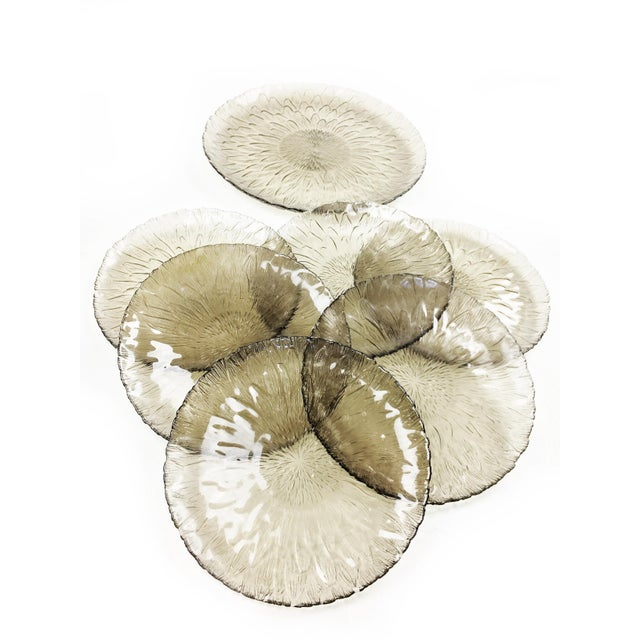 Vintage Arcoroc Glass Sunflower Plates - Set of 7