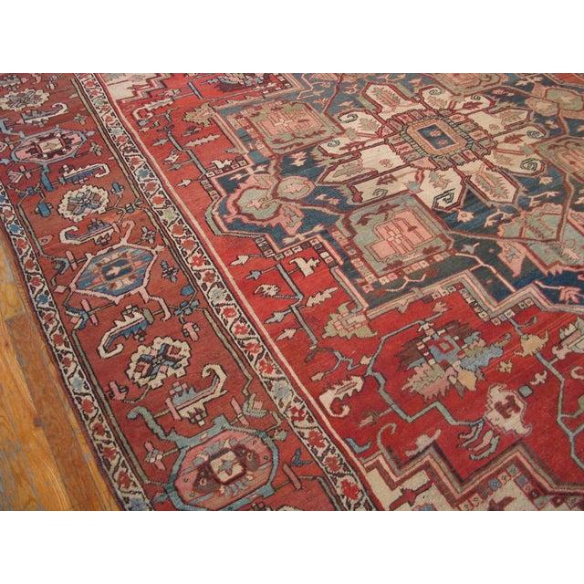 Antique Serapi Rug 9 8 15 4 Chairish