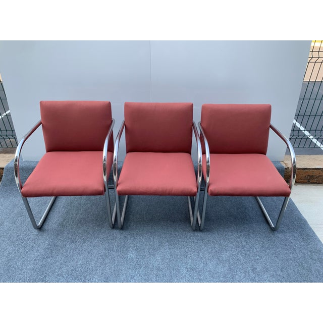 1970s Chrome Cantilever Chairs Attributed to Thonet - Set of 3 For Sale - Image 12 of 12