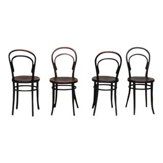 No.14 Thonet Bentwood Chairs - Set of 4 For Sale