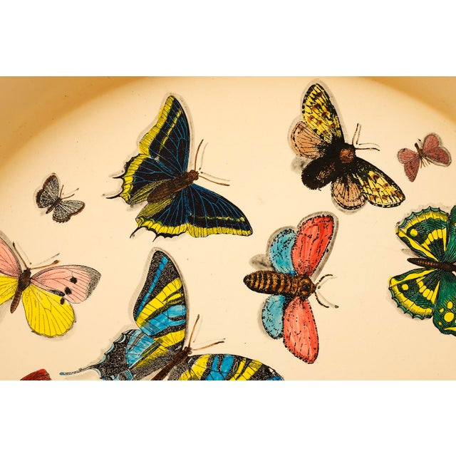 1950s Piero Fornasetti Butterfly Motif Serving Tray For Sale In Santa Fe - Image 6 of 9