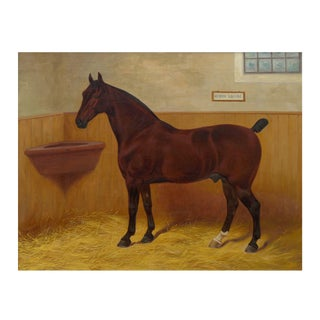 """Hedon Squire"" Antique British Equestrian Horse Painting by Frank Babbage C. 1901 For Sale"