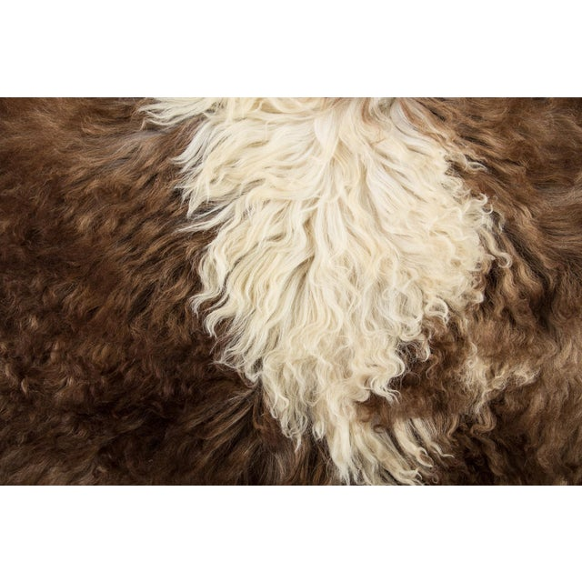 """2010s Contemporary Natural Sheepskin Pelt - 2'4""""x3'6"""" For Sale - Image 5 of 7"""
