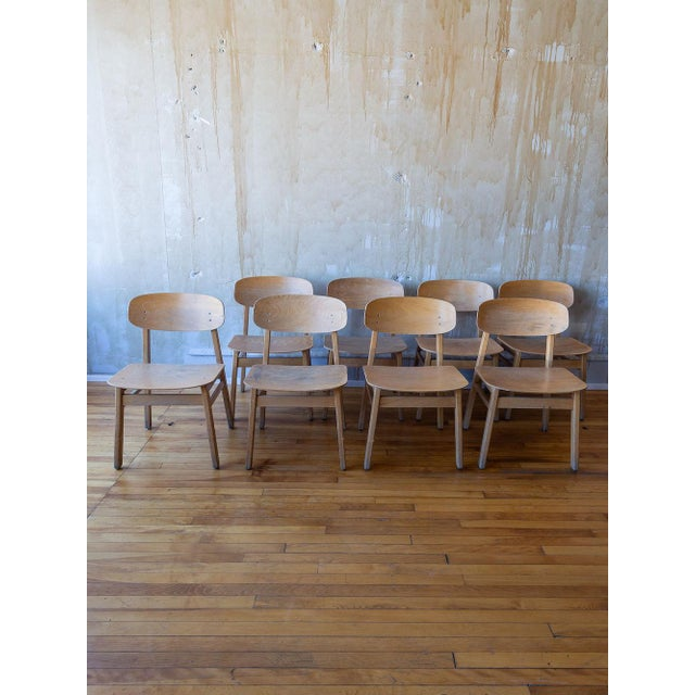 Vintage Italian School Chairs- Set of 8 For Sale - Image 10 of 11