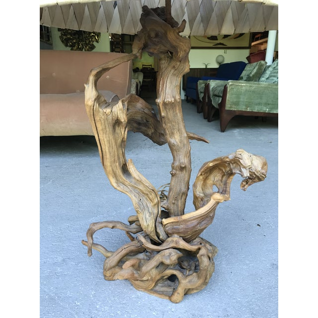 """Brown 50"""" Tall Monumental Driftwood Lamp Original Woven Shade For Sale - Image 8 of 10"""