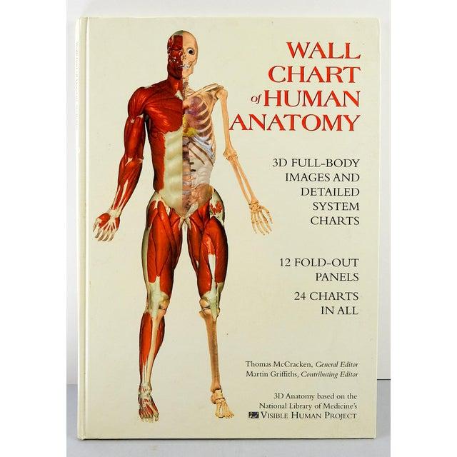 Wallchart Of Human Anatomy Book Chairish
