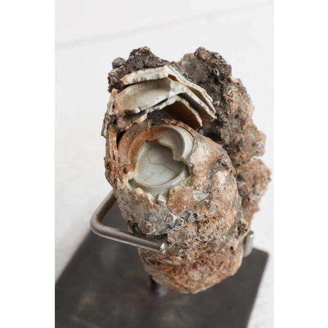 18th Century Cau Mau Shipwreck Porcelain Clump For Sale - Image 5 of 8