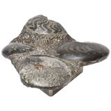Image of Organic Modern Biomorphic Stone Sculpture on Stainless Steel Custom Stand For Sale