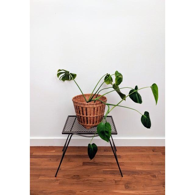 Gabriella Crespi Organic Modern Rattan Planter Basket For Sale - Image 4 of 8