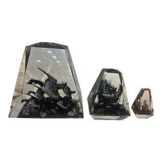 1970s Alessandro Albrizzi (Attributed) Modern Trio of High End Solid Lucite Obelisks With Diorama of Wildlife Scenes For Sale