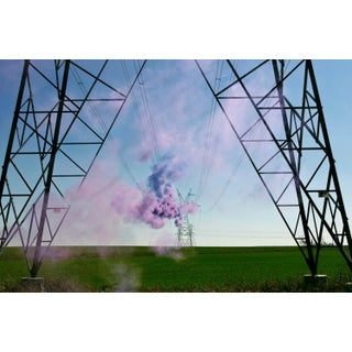 """""""Purple Pop"""" Contemporary Color Photograph by Irby Pace 55 x 36 For Sale"""
