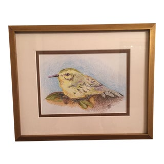 Small Colored Pencil Bird Drawing For Sale