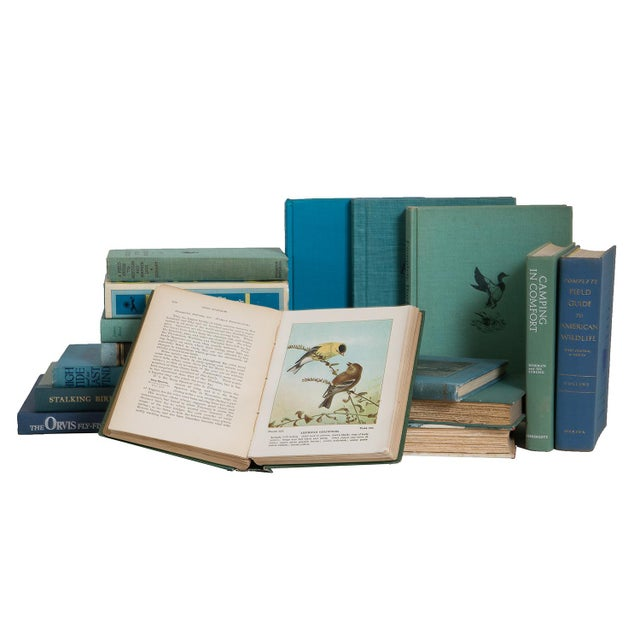 The Lakes Fishing and Outdoors Book Set, (S/20) For Sale - Image 4 of 5
