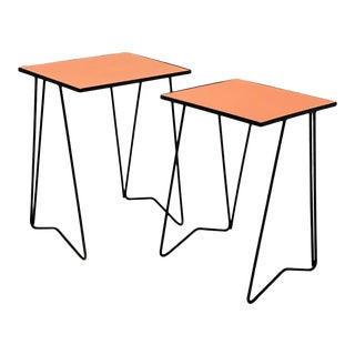Mid Century Iron and Coral Side Tables - a Pair For Sale