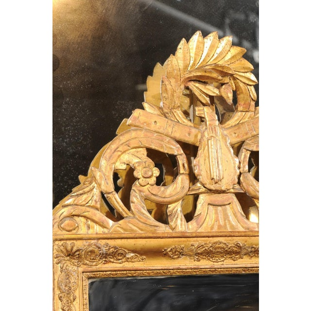 Wood French Louis XV Style Giltwood Mirror with Hand Carved Liberal Arts Symbols For Sale - Image 7 of 10