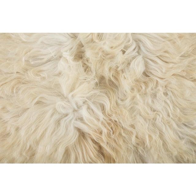 "Adirondack Contemporary Long Soft Wool Sheepskin Pelt Rug - 2'0""x3'7"" For Sale - Image 3 of 7"