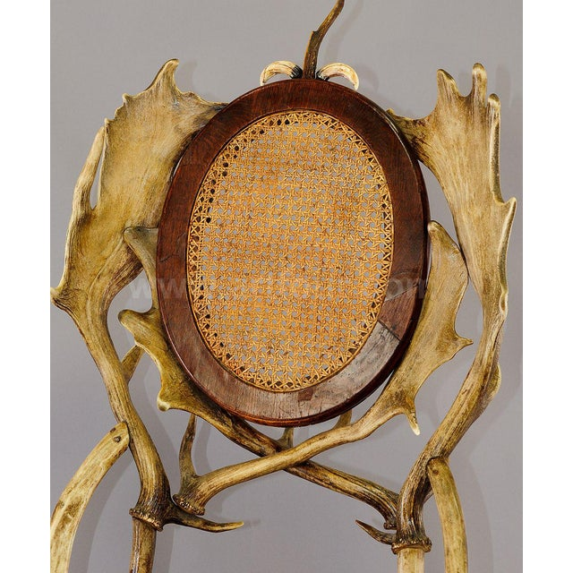 Early 20th Century Antique Cabin Decor Antler Parlor Chair Ca. 1900 For Sale - Image 5 of 6
