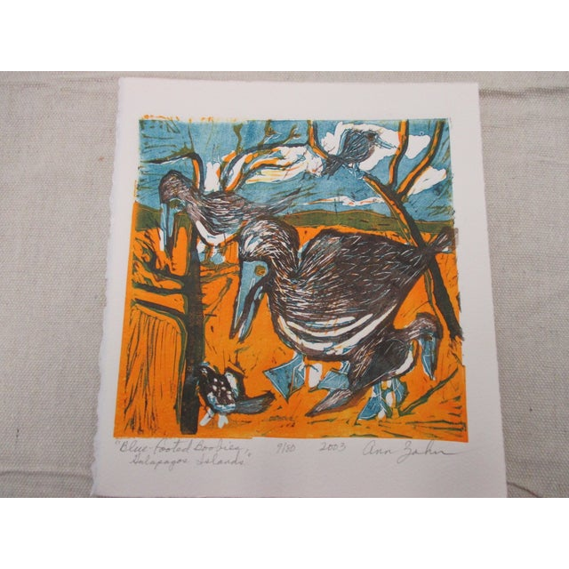 2000 - 2009 Vintage Lithograph Titled: Blue Footed Boobies Signed by Artist: Ann Zahn For Sale - Image 5 of 5