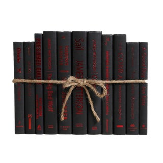 Modern Mystery ColorPak : Decorative Books in Black With Red Accents