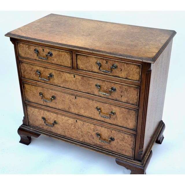 English Georgian Style Walnut Burl Chest of Drawers For Sale - Image 4 of 11