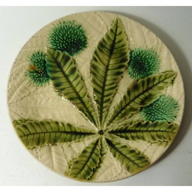 19th Majolica Chesnut Plate - Image 2 of 3