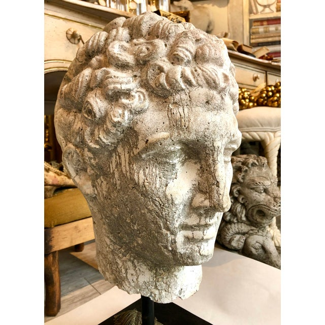 1930s Greek Mid-Century Head of the God Hermes Sculpture For Sale - Image 9 of 13