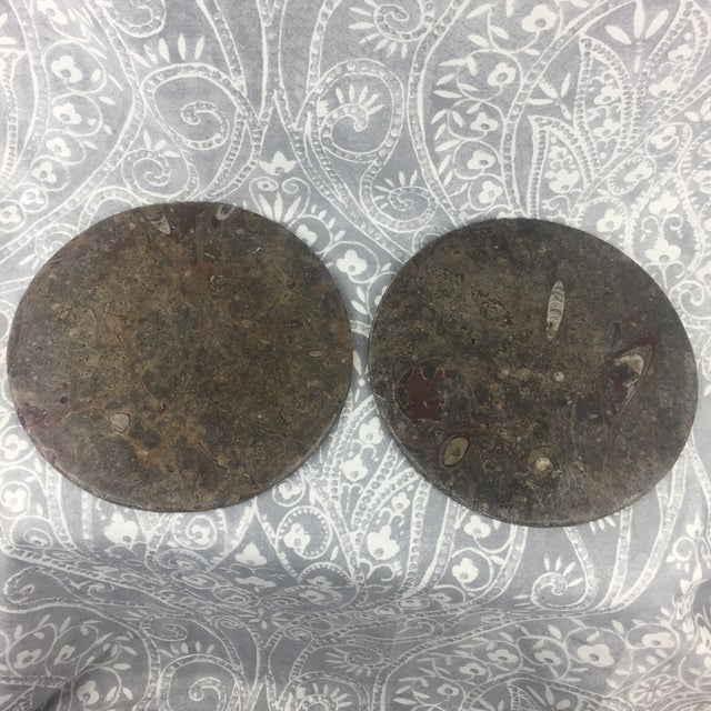 Orthoceras Red Brown Fossil Stone Plates- a Pair For Sale - Image 9 of 12