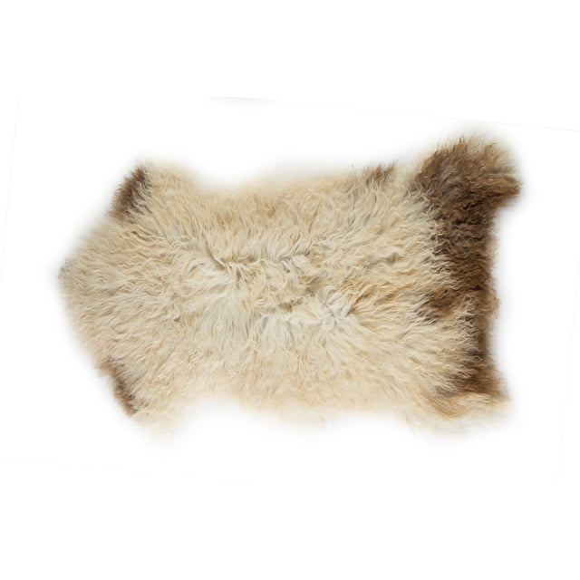 Our rare Mediterranean sheepskin pelts are made from the softest, thickest natural sheepskins available, each sheepskin is...